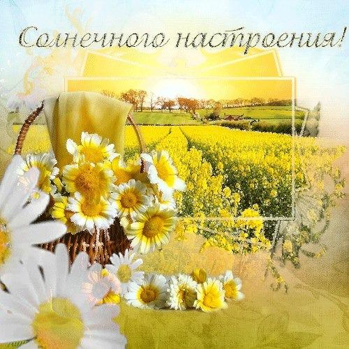 картинки прекрасного дня