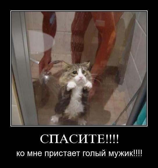 http://content.foto.my.mail.ru/community/fotoprikolii/_groupsphoto/h-35.jpg