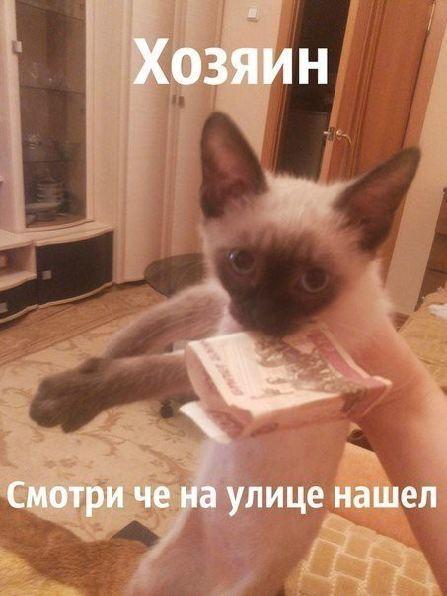 http://content.foto.my.mail.ru/community/fotoprikolii/_groupsphoto/h-43.jpg