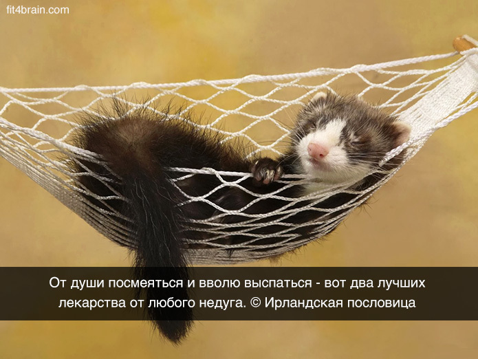 http://content.foto.my.mail.ru/community/funny_cards/_groupsphoto/h-9838.jpg