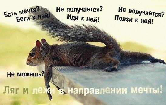http://content.foto.my.mail.ru/community/misli_vremen/_groupsphoto/h-10872.jpg