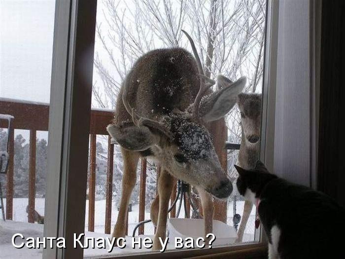 http://content.foto.my.mail.ru/community/prikolist2014/_groupsphoto/h-1.jpg