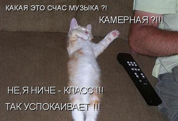 http://content.foto.my.mail.ru/community/prikoly-i-shutki/_groupsphoto/h-2212.jpg
