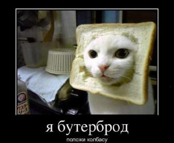 http://content.foto.my.mail.ru/community/ubeysya/_groupsphoto/h-13.jpg