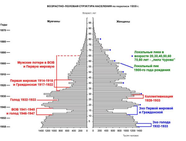 Как сделать возрастно-половую пирамиду