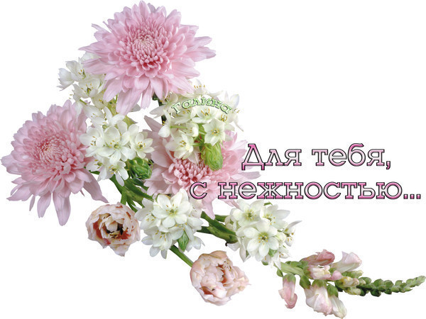 http://content.foto.my.mail.ru/inbox/olga-rubcova54/_blogs/i-1360.jpg