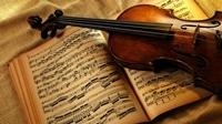 VIII Відкритий Регіональний конкурс гри на струнних інструментах. (м. Дніпропетровськ)