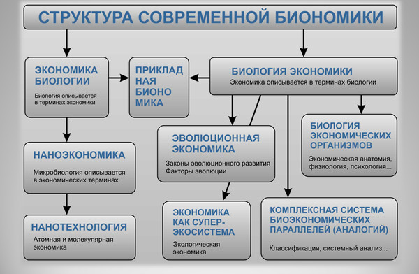 Структура современной