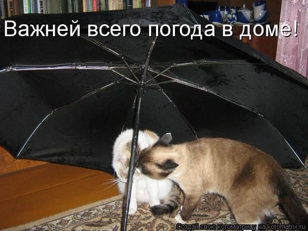 Погода в доме как сделать