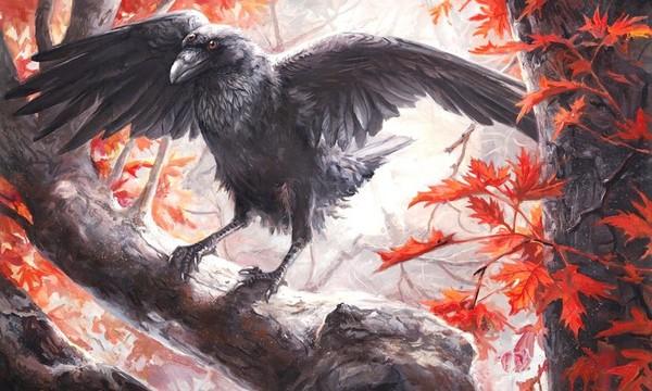 Symbolism Of Three Black Crows Investigated Those