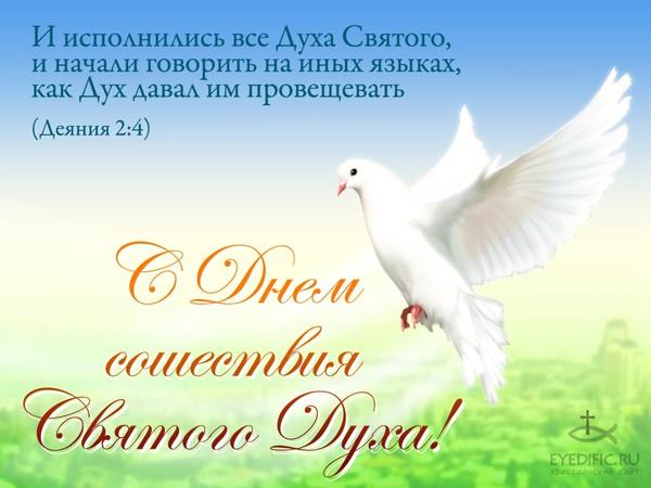 Поздравления с днём святого духа
