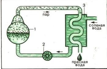 Как из морской воды сделать пресную воду 167