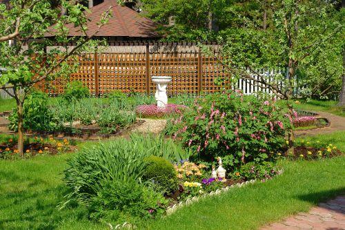 Каталог цветы в саду и огороде 88