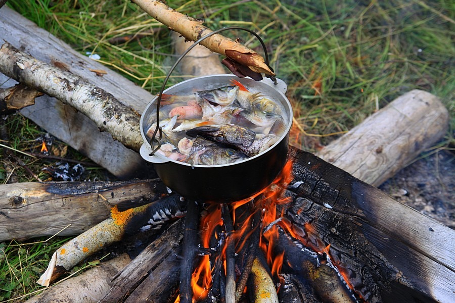 видео приготовление рыбы на рыбалке