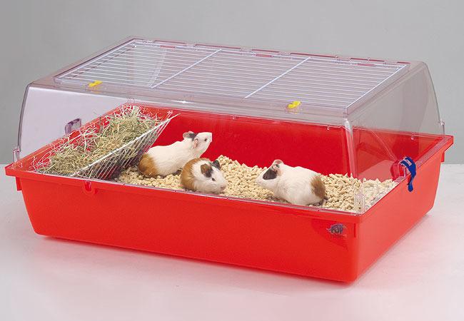 Корм для кошек ROYAL CANIN Siamese сиамских 400г - купить