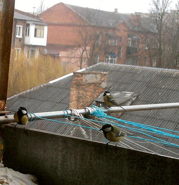 http://content.foto.my.mail.ru/mail/hummel9/315/h-354.jpg
