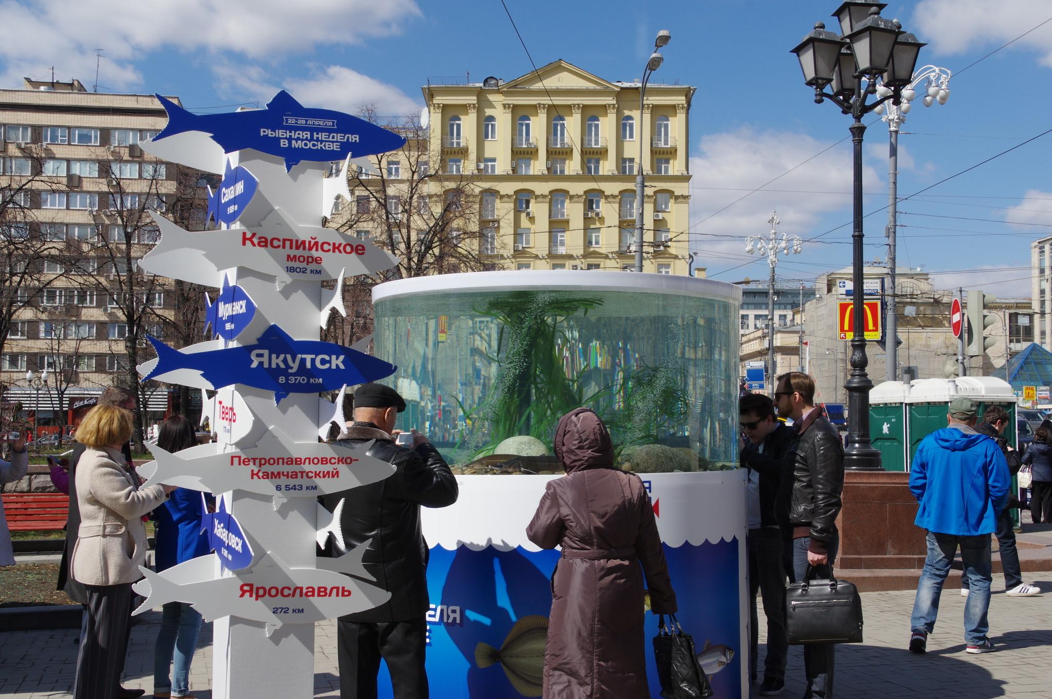 Фестиваль «Рыбная неделя» в Москве