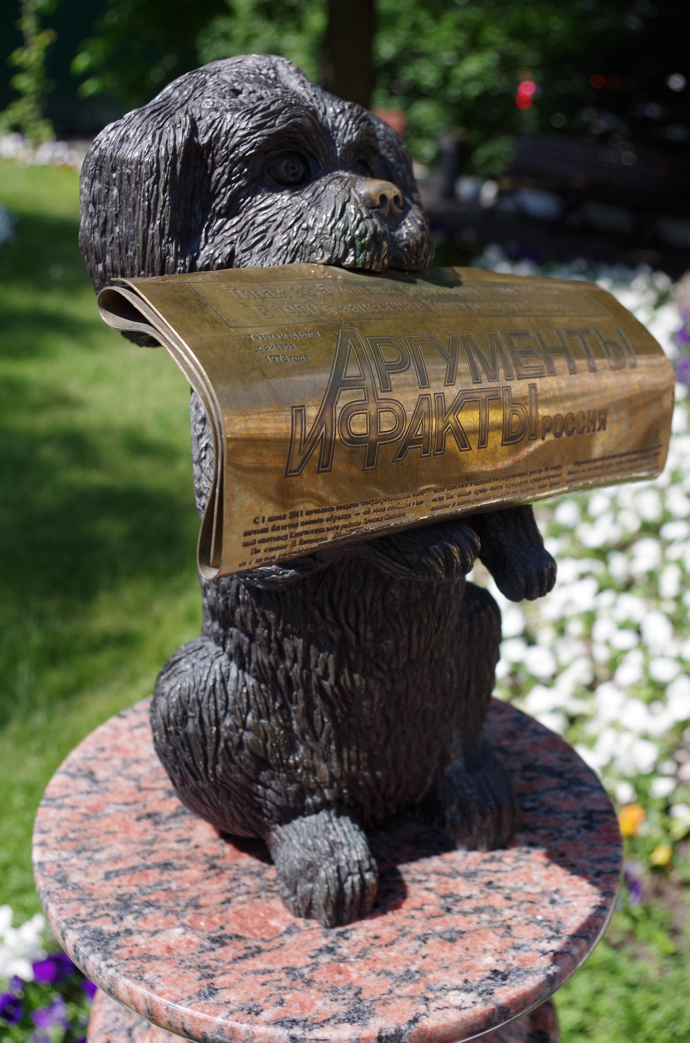 Памятник талисману газеты «Аргументы и факты» — собаке, приносящей газету