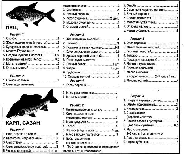 Прикормка для рыб своими руками рецепты летом