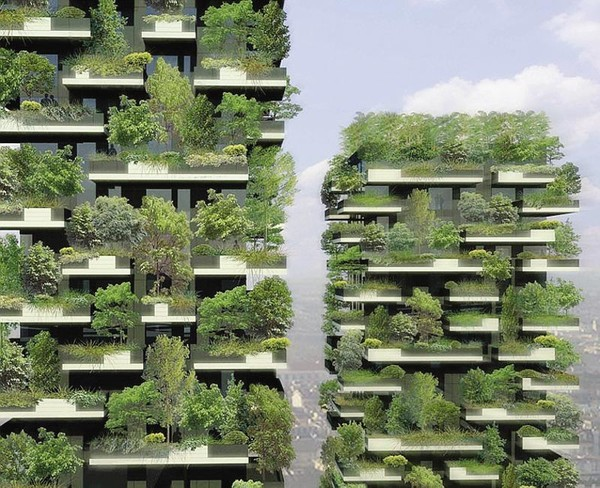 Города - вертикальыне фермы