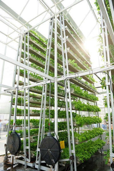 http://prilesie.net/vertical_farms