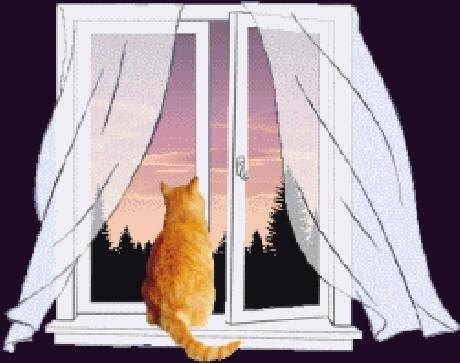 Рисунки кота на карнизе окна