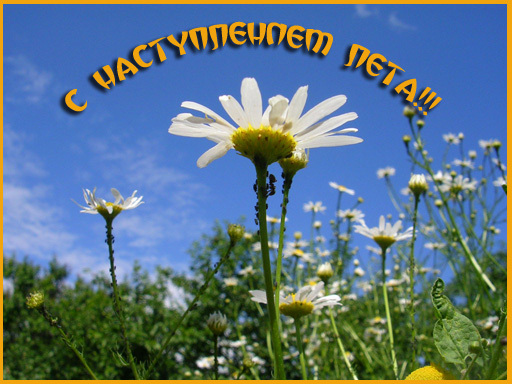 http://content.foto.my.mail.ru/mail/maxi101/_blogs/i-455.jpg