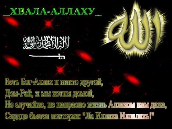Мусульманские поздравления для мужчины 665