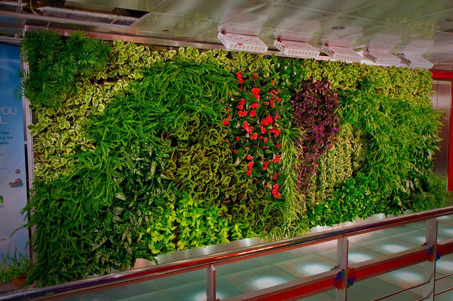 Вертикальное озеленение в офисе своими руками 30