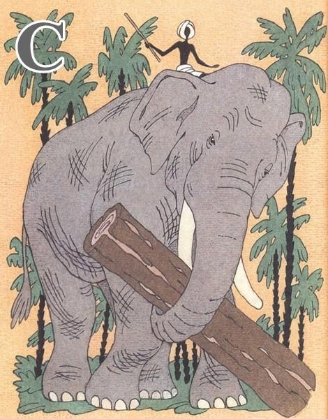 osli-i-sloni