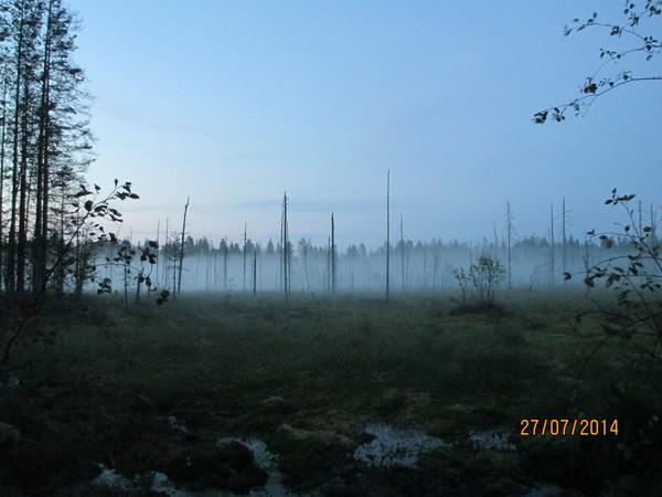 http://content.foto.my.mail.ru/mail/olgadoct/13446/i-14936.jpg
