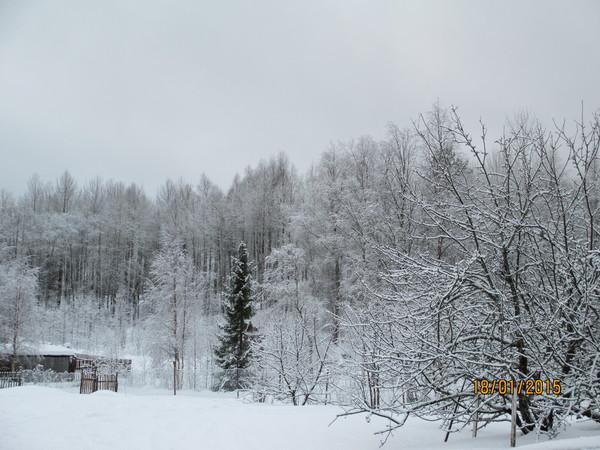 http://content.foto.my.mail.ru/mail/olgadoct/23289/i-23389.jpg