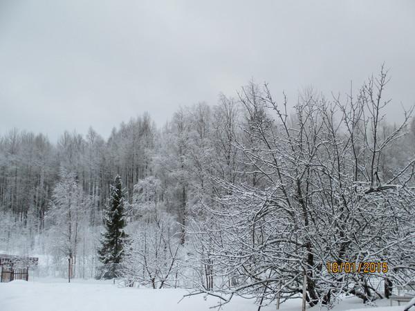 http://content.foto.my.mail.ru/mail/olgadoct/23289/i-23390.jpg