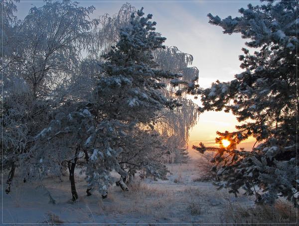 Национальный парк Переславский