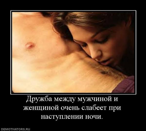 viskazivaniya-i-tsitati-pro-seks-i-druzhbu