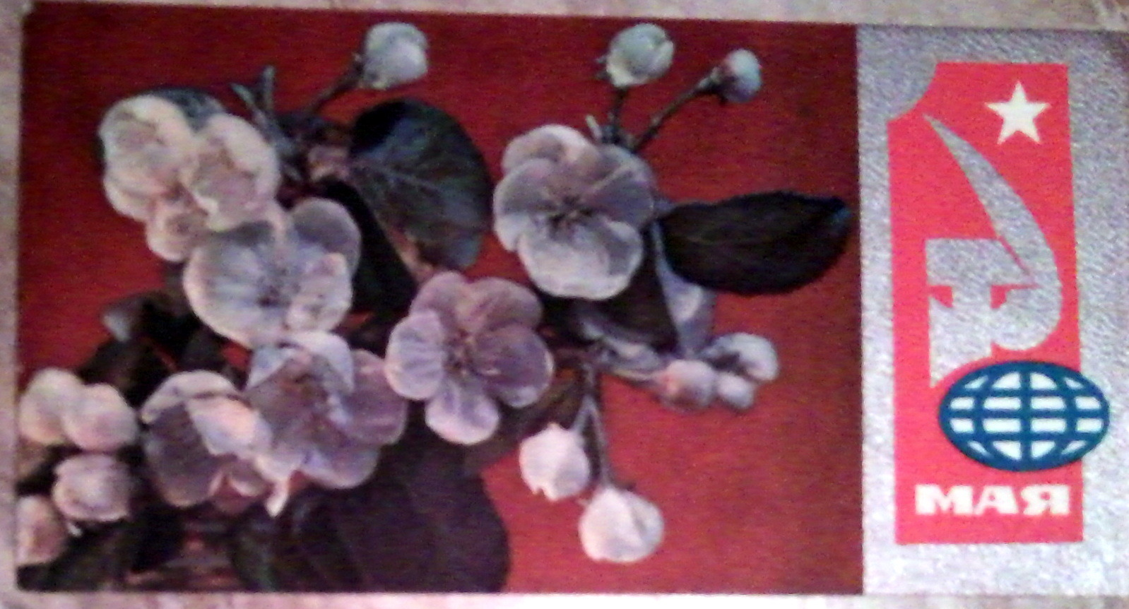 http://content.foto.my.mail.ru/mail/pitaleva1985/Postcrossing/h-1337.jpg