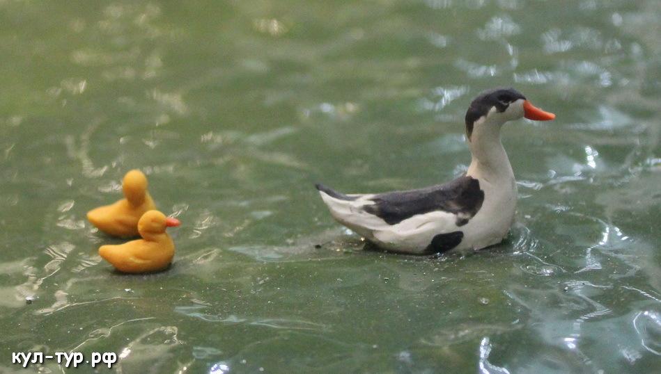 пластилиновые утки