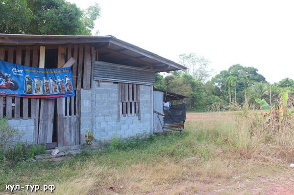 дома тайцев