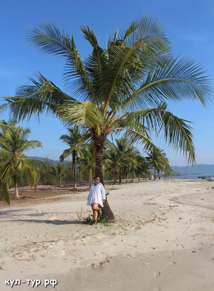 пляж в трате