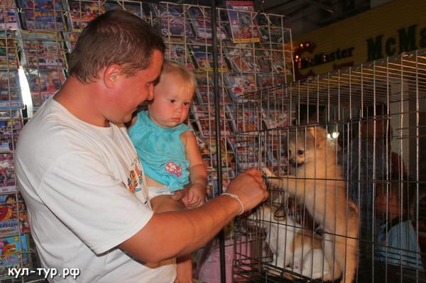 купить собаку в тайланде