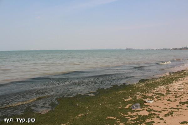 грязное море в паттайе