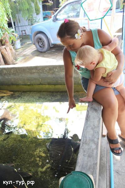 аквариумный магазин