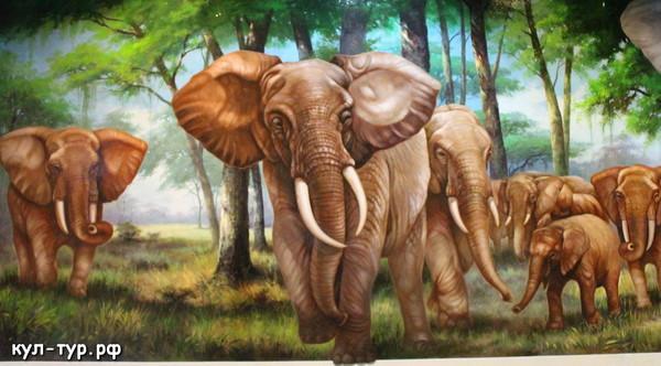 картины в 3д музее слоны