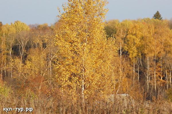 пейзаж природа тамрон 70-200