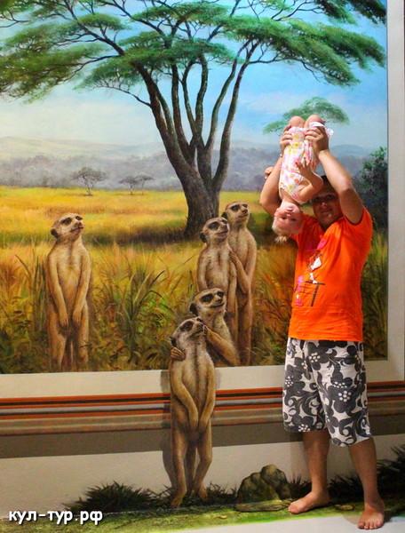 ребёнок с сурикатами
