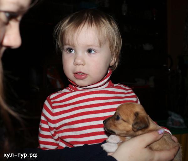 маленький щенок для маленького ребёнка