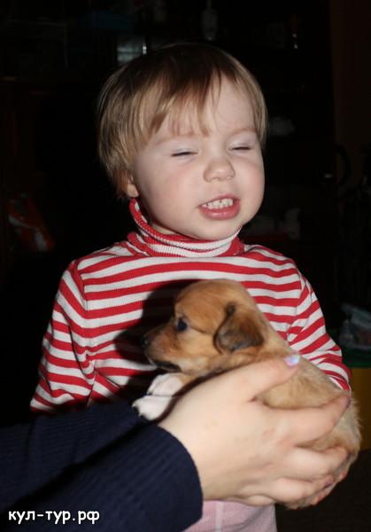 дочке подарили щенка