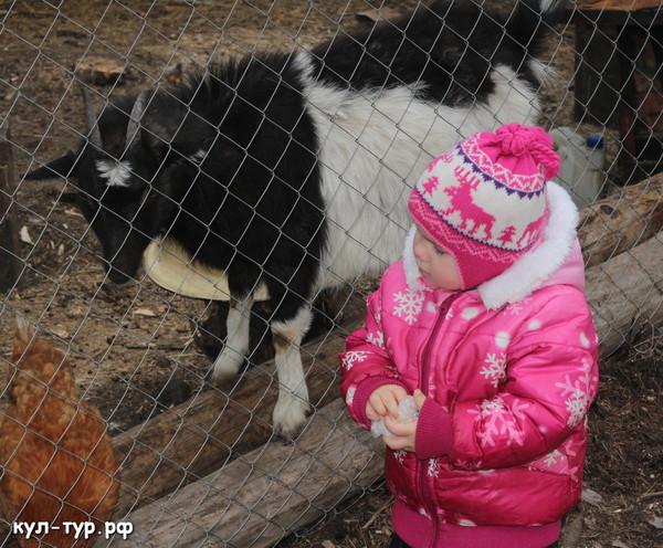 с ребёнком на ферме