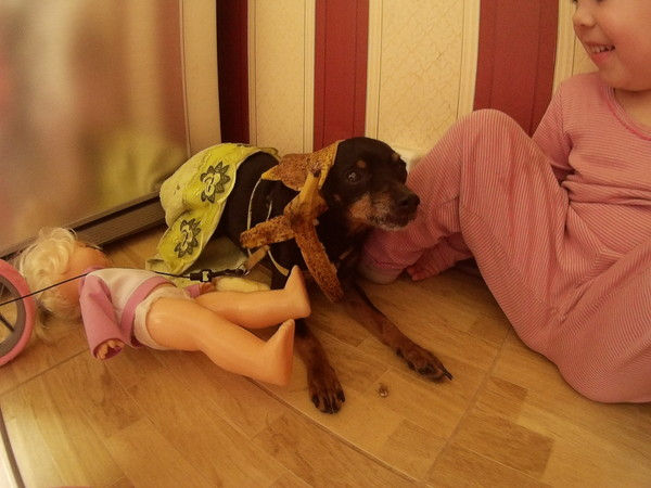 дочка и собака