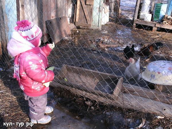 ребёнок кормит домашних животных